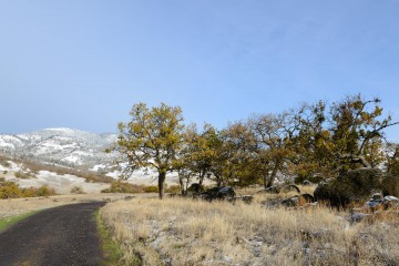 Ranch Road in First Snow || Cascade-Siskiyou National Monument, Oregon