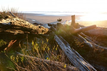 Ruby Beach || Olympic National Park, Washington