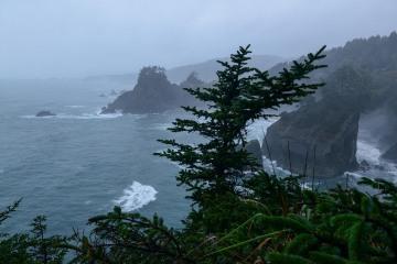 Seal Cove at Samuel H. Boardman State Scenic Corridor || Oregon Coast