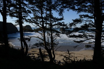 Through the Pines at Ecola State Park || Cannon Beach, OR