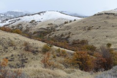 First Snow in Cascade-Siskiyou National Monument || Oregon