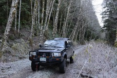 Toyota Tacoma || Olympic National Forest, WA