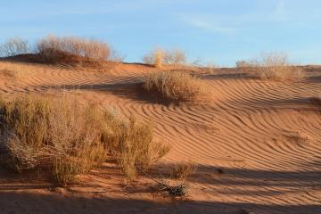 Desert Southwest || Arches NP