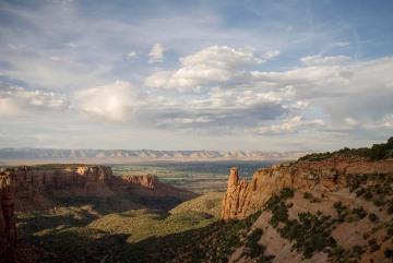 Summer Solitude || Colorado NM