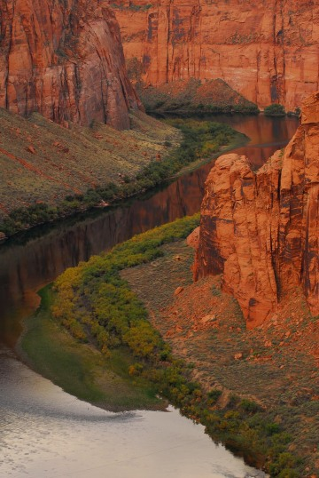 Colorado River Reflections || Arizona