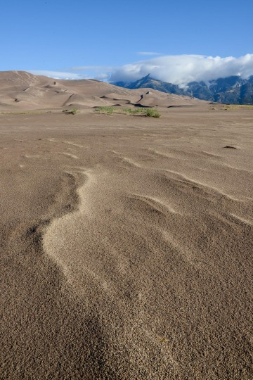 Sand Dune Detail || Great Sand Dunes NP