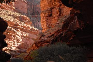 Havasu Canyon || Havasupai Indian Reservation