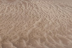 Patterns in the Sand || Great Sand Dunes NP