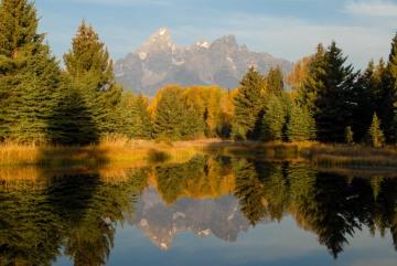 Fall at Schwabacher Landing || Grand Teton NP