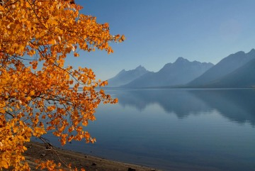 Jackson Lake in Fall || Grand Teton NP