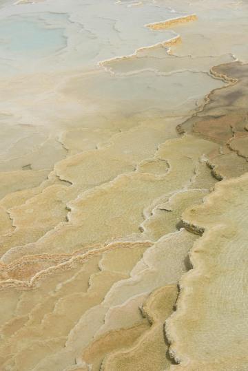 Mammoth Hot Springs || Yellowstone NP