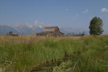 Mormon Row || Grand Teton NP