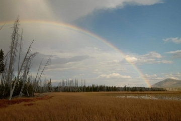 Rainbow over Lewis Lake || Yellowstone NP