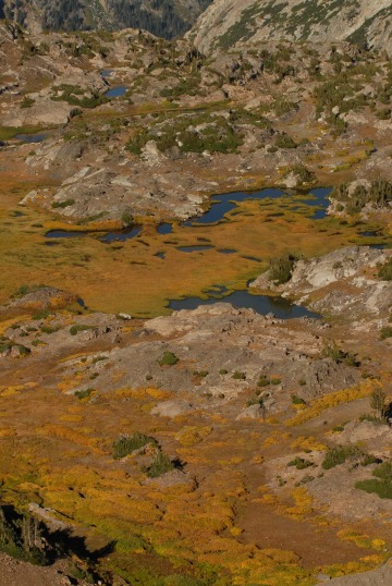 Teton Tundra || Grand Teton NP