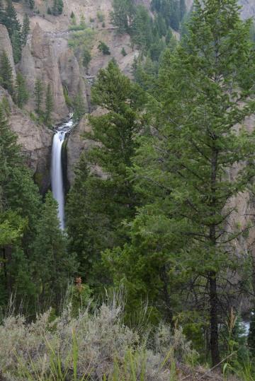 Tower Fall || Yellowstone NP