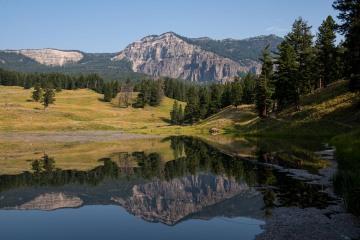 Trout Lake || Yellowstone NP