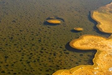 Upper Geyser Basin || Yellowstone NP