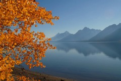 Jackson Lake in Fall || Grand Teton NP
