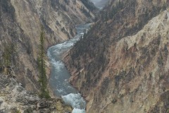 Lower Falls from Artist Point || Yellowstone NP