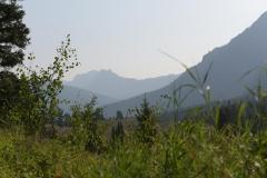 Trout Lake Trail || Yellowstone NP