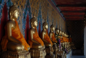 Buddha Statues || Temple of the Dawn