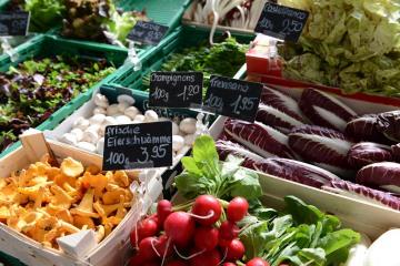 Market in Lucerne || Switzerland