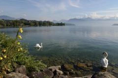 Lake Lucerne || Switzerland