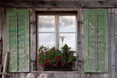 Window in Stans || Switzerland