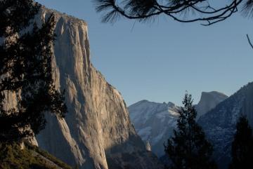 El Capitan and Half Dome Through the Pines || Yosemite NP