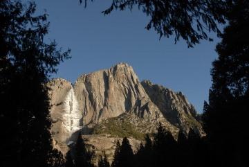 Frozen Yosemite Falls through Trees || Yosemite NP