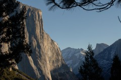 El Capitan and Half Dome Through the Pines || Yosemite NP