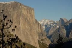 El Capitan and Half Dome and Pine    Yosemite NP